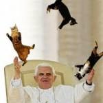 popeandcats
